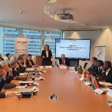 The Vienna Center for Disarmament and Non-Proliferation convene a round table on regional cooperation in security, safety and safeguards in Africa